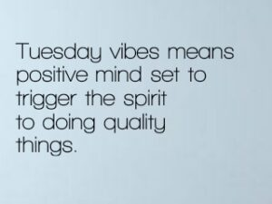Tuesday vibes means positive mind set to trigger the spirit to doing quality things.